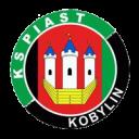 piast_kobylin-200x200