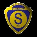 stal_pleszew-200x200