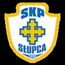skp_slupca