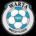 warta_miedzychod - 250x250